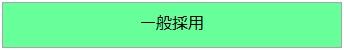 icon_saiyo_1